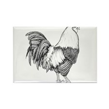 Rooster Drawing Rectangle Magnet