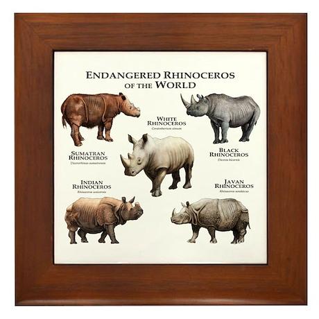 Rhinos of the World Framed Tile