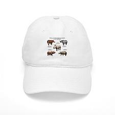 Rhinos of the World Baseball Cap