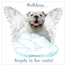 Bulldog 6 Canvas Art