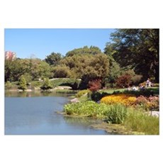 Sunday, Central Park Framed Print