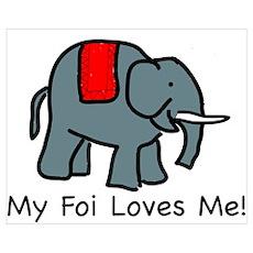 My Foi Loves Me Poster