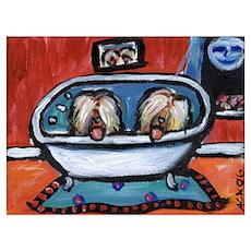BRIARDS in bath Poster