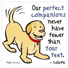 Four Feet (Dog) Poster