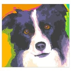 Border Collie Canvas Art