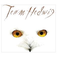 Team Hedwig Poster