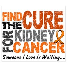 Find The Cure 1 KIDNEY CANCER Canvas Art
