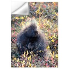 Porcupine Wall Decal