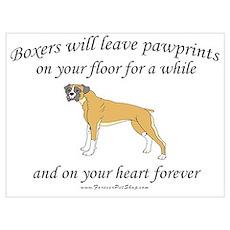 Boxer Pawprints Poster