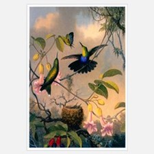 Cute Bird flowers Wall Art