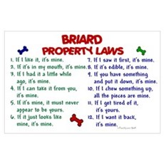 Briard Property Laws 2 Poster