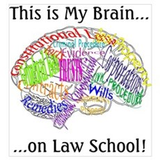 This is my Brain...Law School Poster