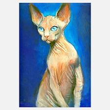 Sphynx cat 15