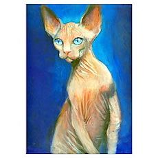 Sphynx cat 15 Poster