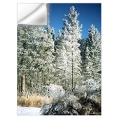 Frosty Trees Wall Decal