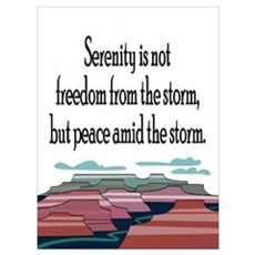 SERENITY STORM Poster