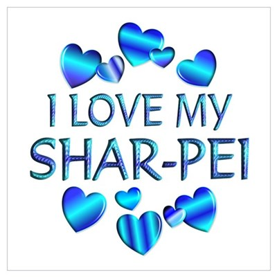 Shar-Pei Poster