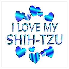 Shih-tzu Poster