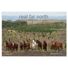 real far north forest horses