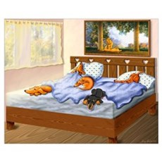 Sleeping Dachshunds Poster