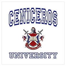 CENICEROS University Poster