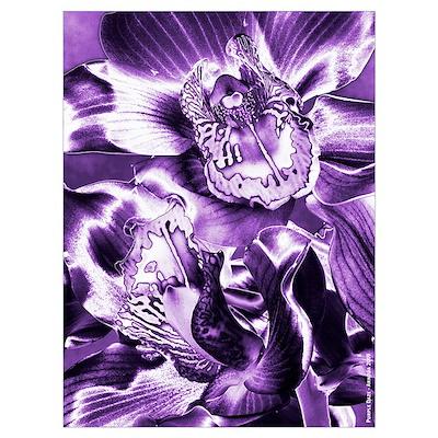 Purple Daze Poster