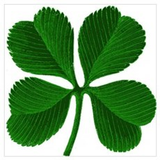 Luck of the Irish Four Leaf Clover Pr Poster
