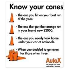 Know your cones Poster