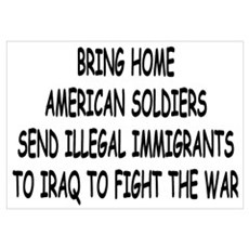 SEND ILLEGAL IMMIGRANTS TO IR Poster