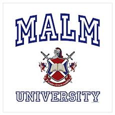 MALM University Poster