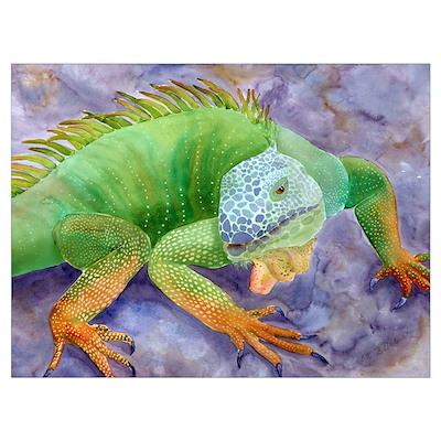 Iguana Art Poster