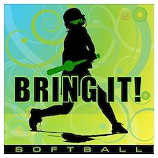 2011 Softball 102 Poster