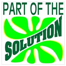 Part of the Solution Poster