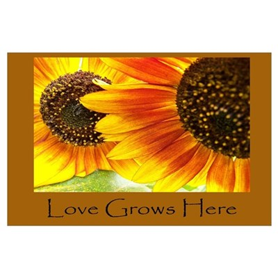 Love Grows Here Sunflowers Poster