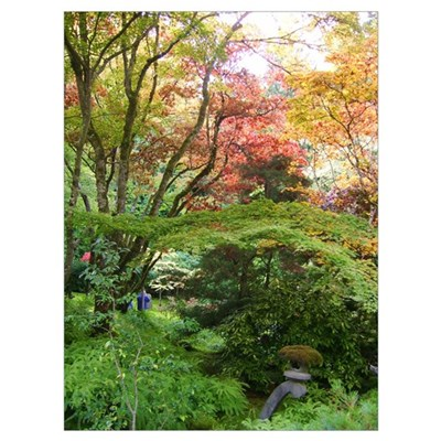 Japanese Garden in Autumn Poster