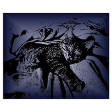 Cute Kitty 16 Poster