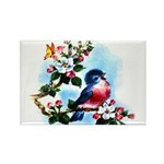 Cute Bluebird Singing Rectangle Magnet