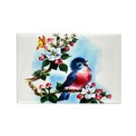 Cute Bluebird Singing Rectangle Magnet (100 pack)