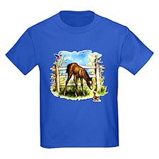 Cute Foal Horse Pony Filly T