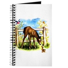 Cute Foal Horse Pony Filly Journal