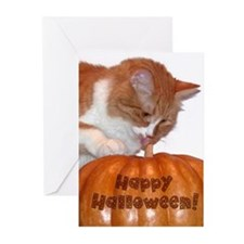 Cat with Pumpkin Greeting Cards (Pk of 20)