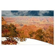 Snow at the Grand Canyon Poster
