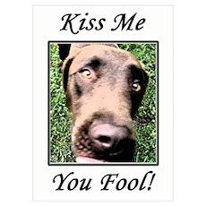 Kiss Me, You Fool! Poster