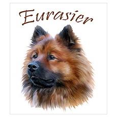 Eurasier Poster