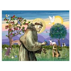 St Francis & Border T Poster