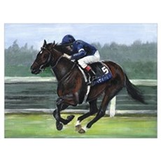 Race Horse Framed Print