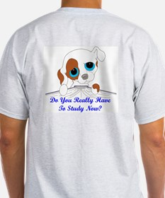 Do You Really Have To Study N T-Shirt