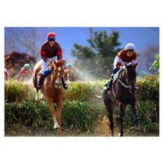 Race Horse Jumping Poster