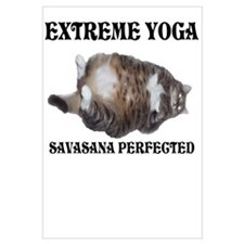 Extreme Yoga