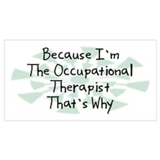 Because Occupational Therapist Poster